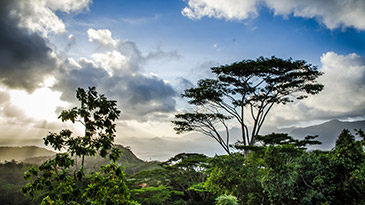 Activities in the Seychelles - walking and hiking routes