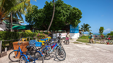 Activities in the Seychelles - Cycling on La Digue