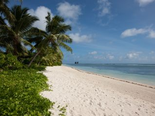 excursion-full-day-land-and-sea-on-praslin-and-la-digue-img-372