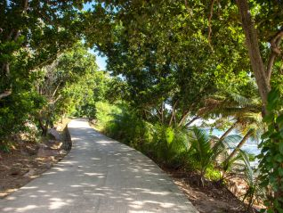 excursion-full-day-land-and-sea-on-praslin-and-la-digue-img-373