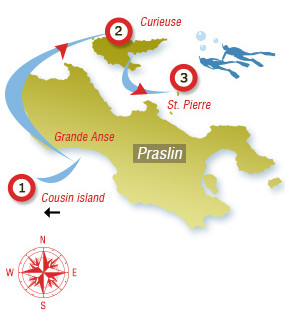 Angel Tours - Inseln Cousin, Curieuse & St. Pierre mit Privatboot