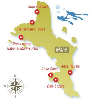 tourmap-excursion-marine-discovery-experience