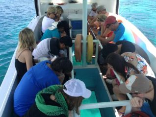 excursion-best-tours-seychelles-glass-bottom-boat-tour-st-anne-marine-park-img-680