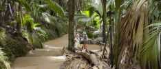 Excursion: La Source des Seychelles - Vallée de Mai - Guided Tour