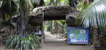 tour-private-guided-tour-la-source-des-seychelles-vallee-de-mai-private-guided-tour-1