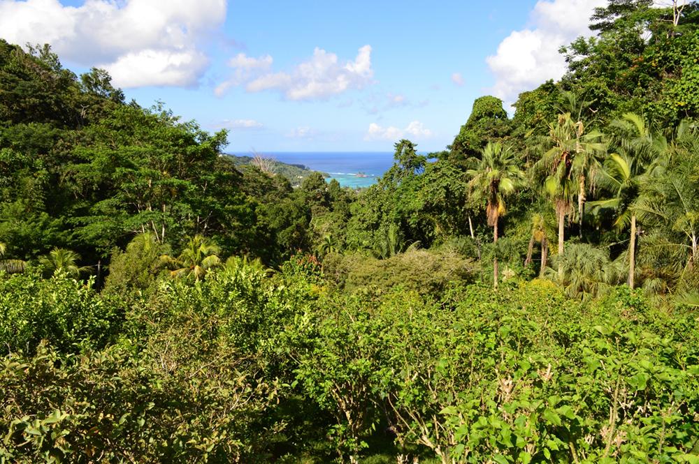 Honeymoon seychelles seychellen reisebericht von imrich for Villa jardin seychelles